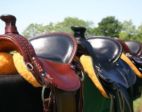 Crest Ridge Saddles - Crest Ridge Saddlery, LLC